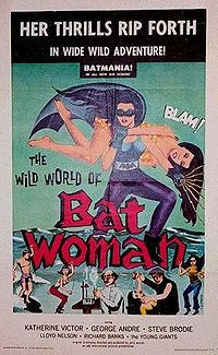 Wild Wild World of Batwoman